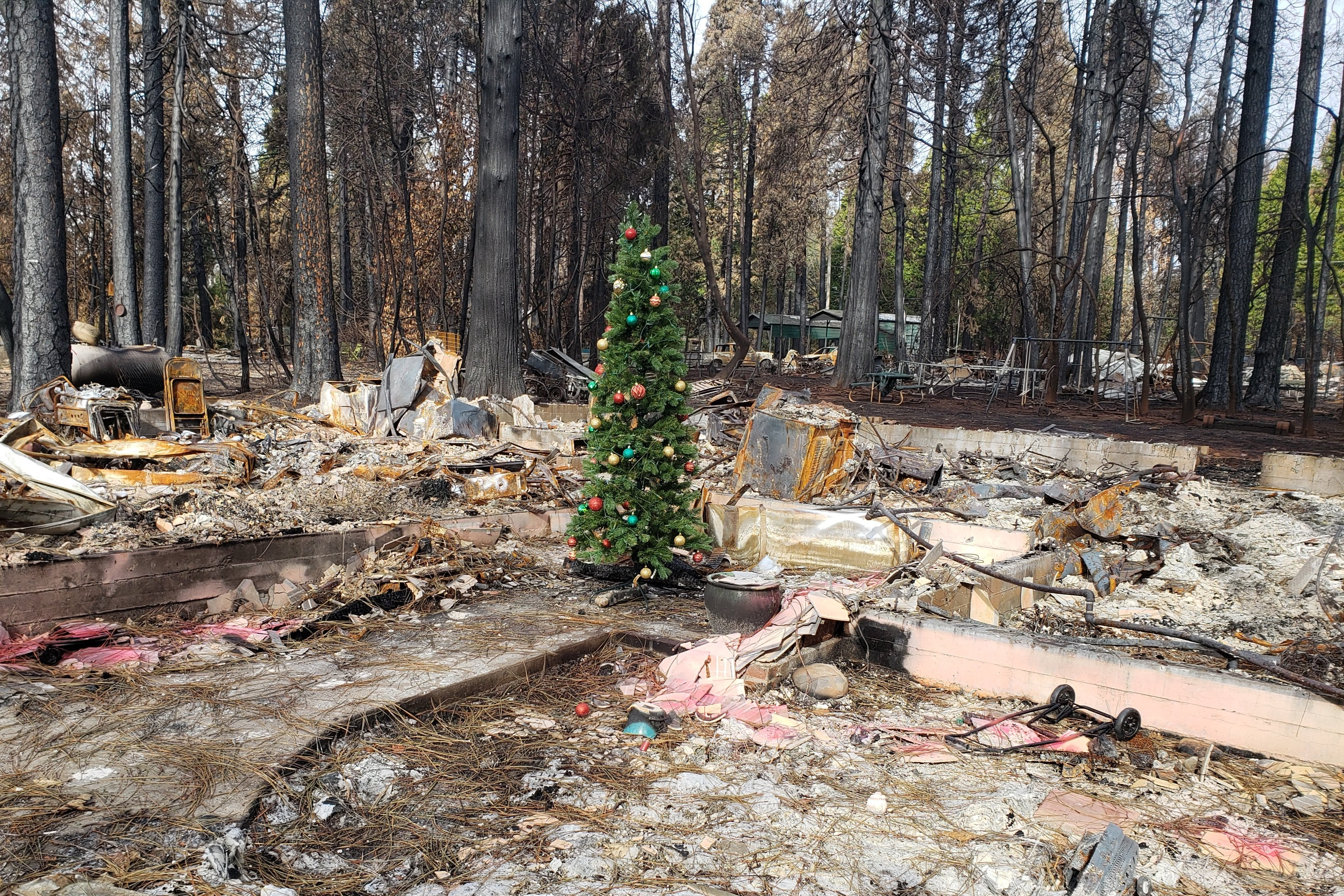 Camp Fire Christmas Tree