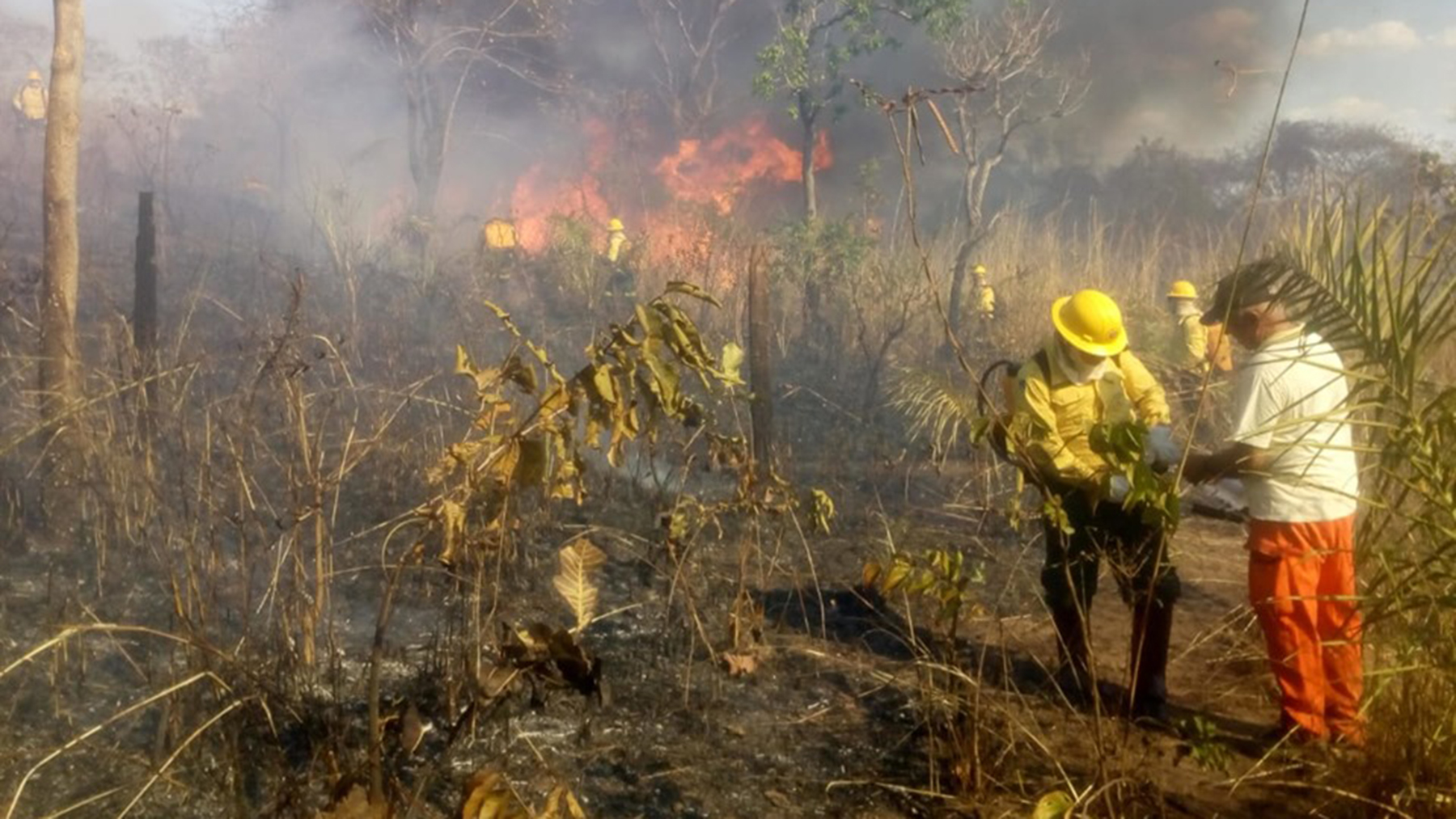 A fire burns in the Brazilian Amazon earlier this summer, and the blazes have continued in the region, raising concerns about long-term health issues. (Photo by Pedro Paulo Xerente for the Fundação Nacional do Índio)