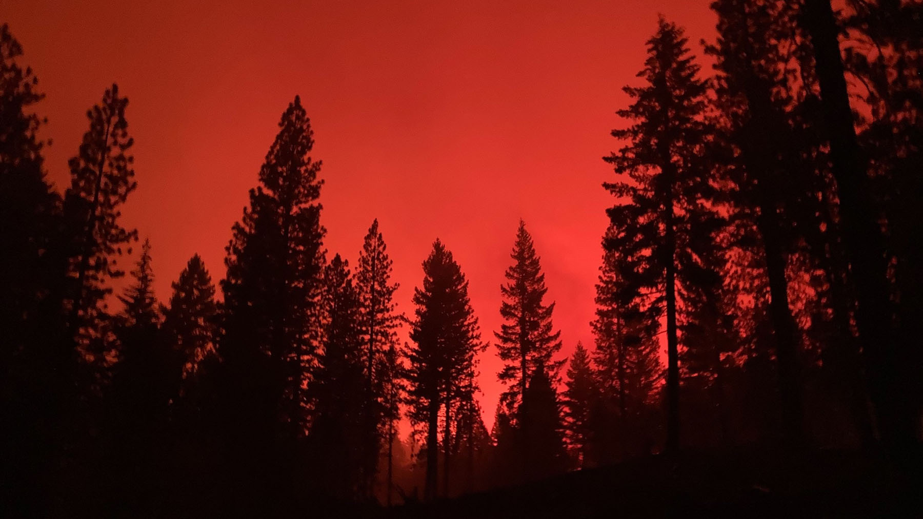 The Dixie Fire produces red skies above Plumas County on August 9, 2021. (Courtesy photo)