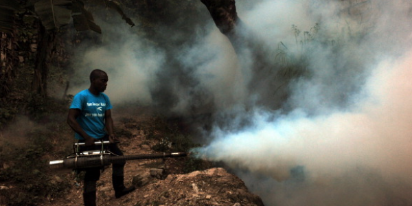 Chikungunya Outbreak: Emergency Aid Bound for Haiti
