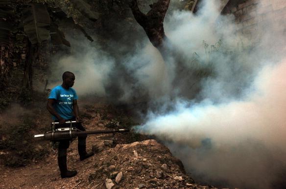 Chikungunya getty image