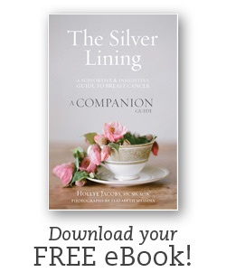 Download your free eBook copy of The Silver Lining Companion by Hollye Jacobs