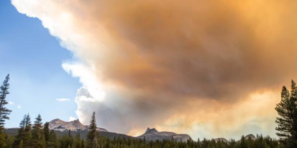 Responding to Wildfires Across California