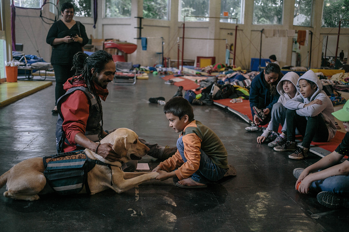 An emotional support dog, Toboggan, visits children in a shelter for those displaced by the earthquake in Mexico City's neighborhood of Santa Cruz Atoyac. According to officials, at least 500 homes in the city are condemned although the numbers are still climbing. (Photo by Meghan Dhaliwal for Direct Relief)